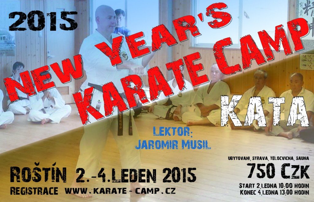 Karate-camp-2015-kata